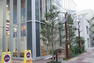 2008_1108yudo0014.jpg