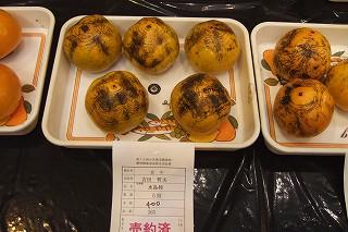 s-2007_1105toyama0029.jpg