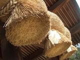 s-2008_0108izumo0022.jpg