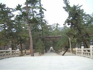 s-2008_0108izumo0029.jpg