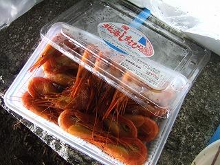 2008_0829engaru0186.jpg