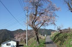s-2007_0429katakata0068.jpg